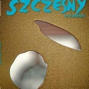 Szczesny in Frankfurt | Book by Stefan Szczesny | 2000 | Book | buy online | Szczesny Art Shop
